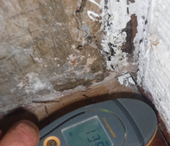 Photo of moisture reader after mold remediation