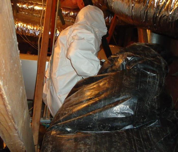Photo of technician at an attic holding a plastic bag containing insulation