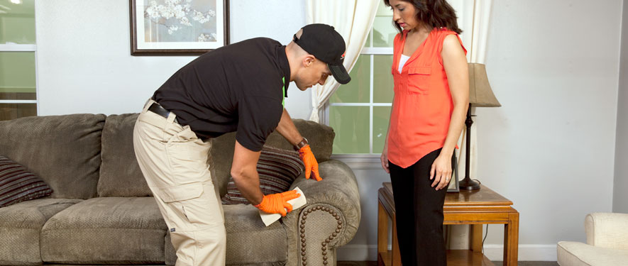 Glendale, CA carpet upholstery cleaning